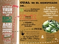 Castillo-de-Canena-infografía-biodinámico2