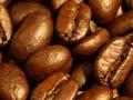 1024-576_cafe-grano