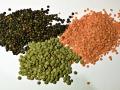 3_types_of_lentil.jpg